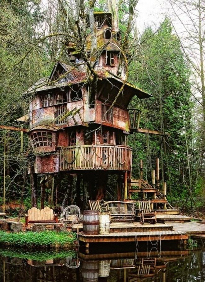Redmond Tree House